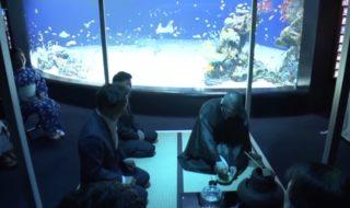 水族館でお茶席